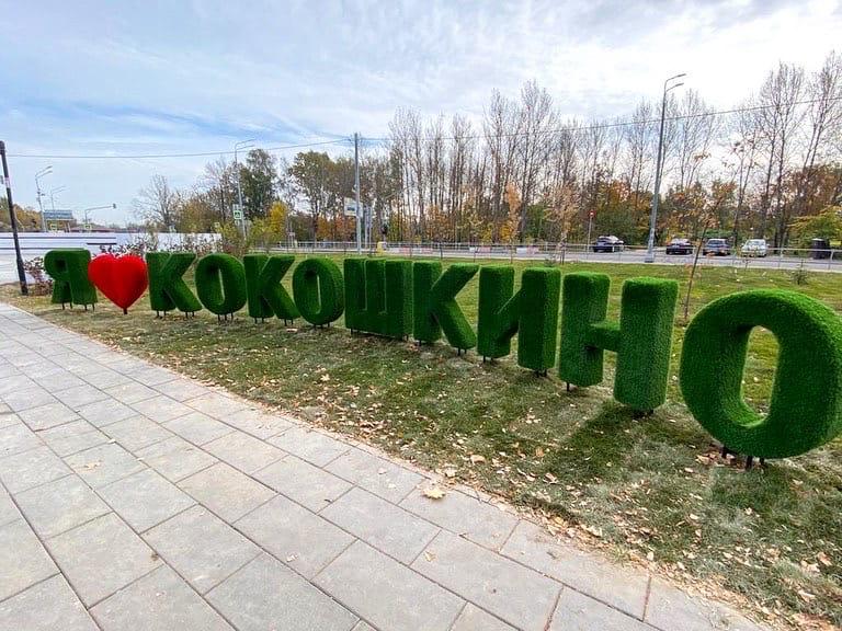 строительство Кокошкино